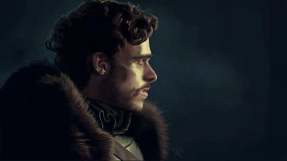 Фото Robb Stark / Робб Старк из сериала Game Of Trones / Игра Престолов, by OctopusTimelord