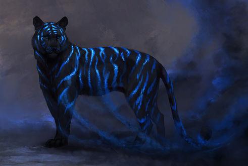 Фото Тигр с синими полосами, от которых идет дым, by JadeMere