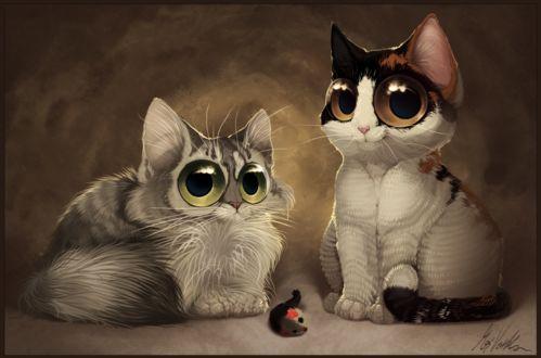 Фото Два котенка с огромными глазами и игрушечная мышь, by Kirwick