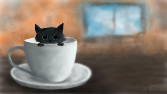 Фото Черный котенок в чашке с блюдцем, by StrefaZamknieta (© zmeiy), добавлено: 13.08.2017 14:06