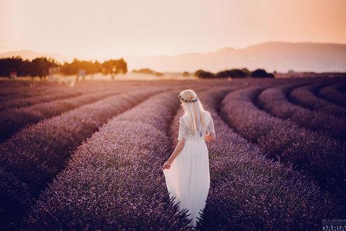 Фото Девушка Валентина стоит на лавандовом поле. Фотограф Дарья Булавина