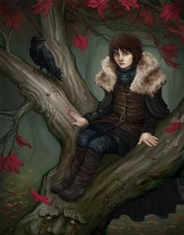 Фото Bran Stark / Бран Старк из сериала Game Of Trones / Игра Престолов, by Krikin
