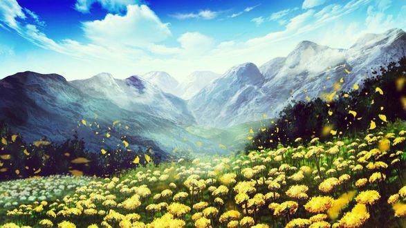 Фото Долина с желтыми цветами у подножия гор под облачным небом