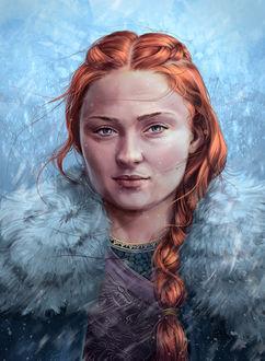 Фото Sansa Stark / Санса Старк из сериала Game Of Trones / Игра Престолов, by Tobiarts-and-Design