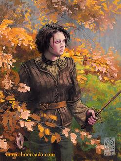 Фото Arya Stark / Арья Старк из сериала Game Of Trones / Игра Престолов, by marcel-mercado