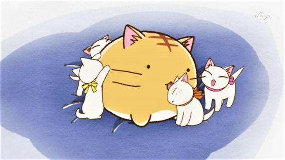 Фото Пуфик с котятами на подушке, кадр из аниме Poyopoyo Kansatsu Nikki / Хроники Пуфика