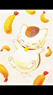 Фото Няко в окружении жареных креветок, арт к аниме Тетрадь друзей Нацумэ