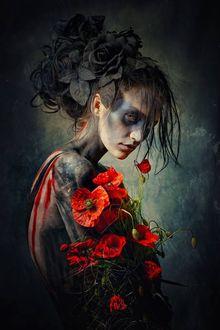 Фото Девушка с красными маками, by Stefan Gesell
