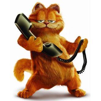 Фото Кот Garfield / Гарфилд из одноименного мультфильма