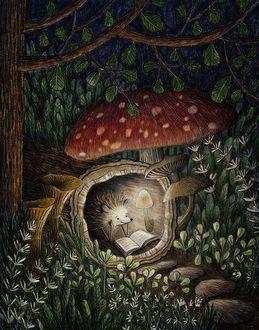 Фото Ёжик уютно устроился в стволе дерева и читает книжку