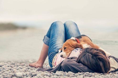Фото Девушка с собакой лежит на гальке