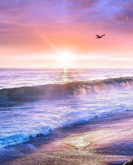 Фото Чайка пролетает над морскими волнами, накатывающими на берег, в свете солнца