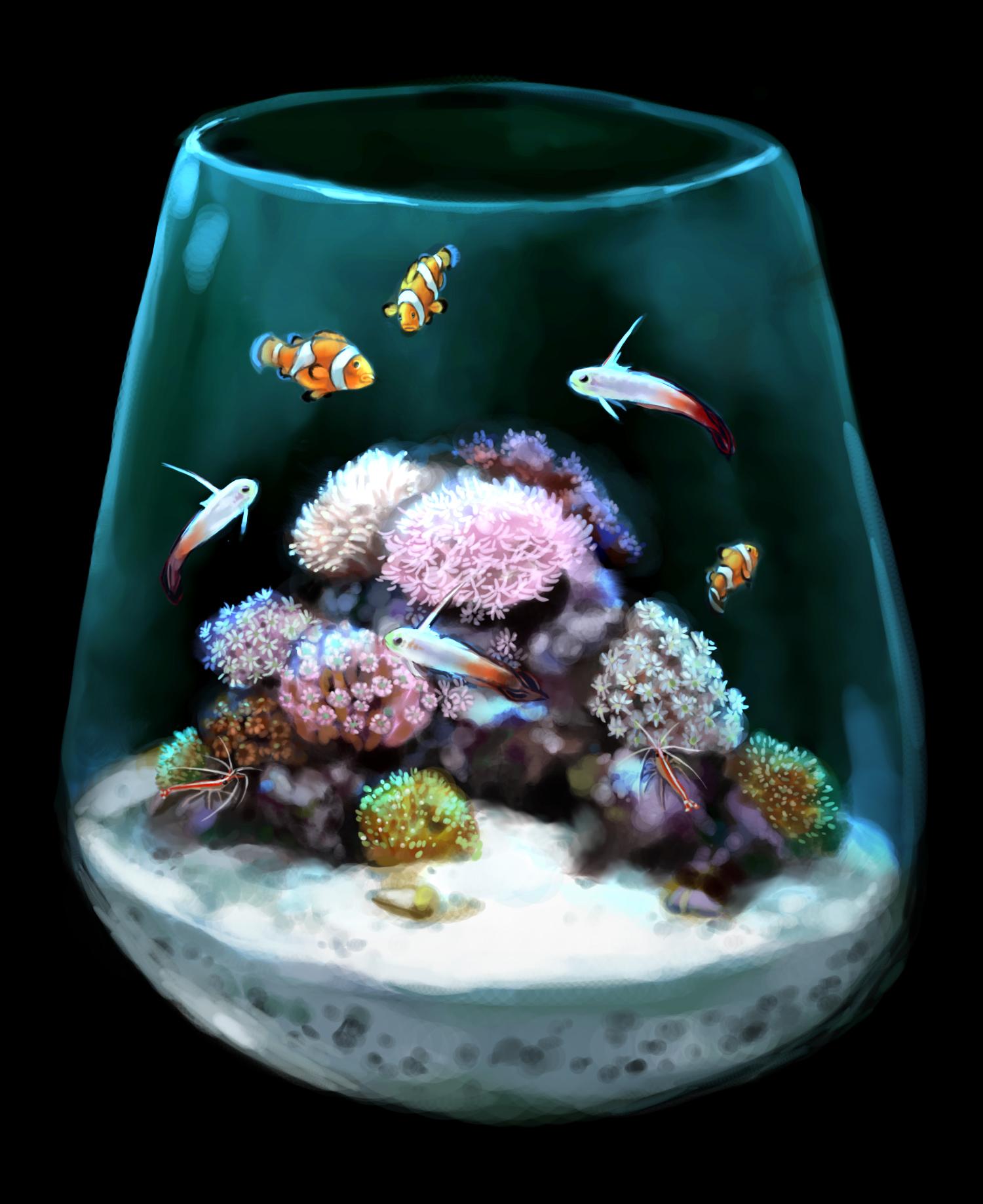 это цветы картинки с рыбками включают первую пятерку