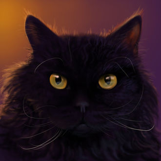 Фото Черная кошка с янтарными глазами, by Trutze