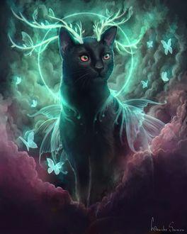 Фантастический кот