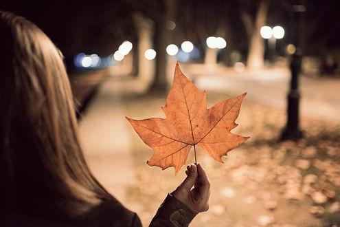 Фото Девушка с осенним листом в руке, фотограф Luis Valadares