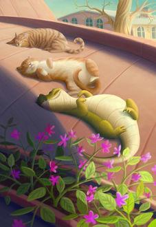 Фото Кошки и дракончик нежатся на солнышке. Иллюстратор Варя Колесникова