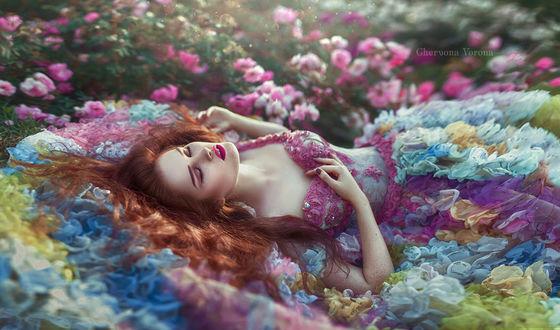 Фото Модель Хелена Ли в цветочном платье лежит среди роз. Фотограф Червона Ворона
