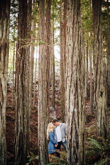 Фото Влюбленные стоят в лесу