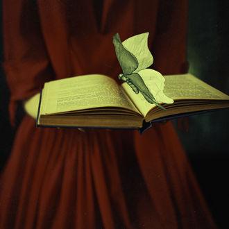 Фото Девушка в красном платье держит книгу с бабочкой, фотограф Nora Drugan