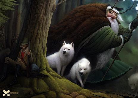 Фото Белые волки с лесным чудищем и охотник у дерева в лесу, by Maxim Kostenko
