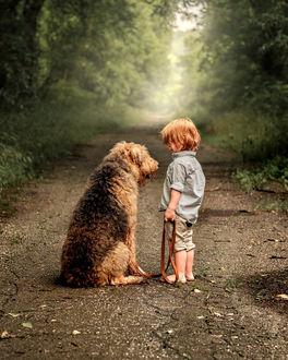 Фото Мальчик с собачкой на дороге, фотограф Adrian C. Murray