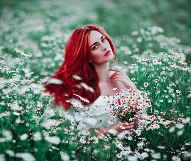 Фото Девушка с яркими волосами с ромашками в руке сидит среди ромашек, фотограф Светлана Беляева