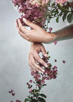 Фото Руки девушки с цветами, фотограф Michelle Magnoli