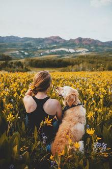 Фото Девушка с собакой породы золотистый ретривер сидит в цветах, фотограф Sam Brockway