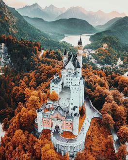 Фото Neuschwanstein castle / замок Нойшванштайн ранней осенью, Germany / Германия