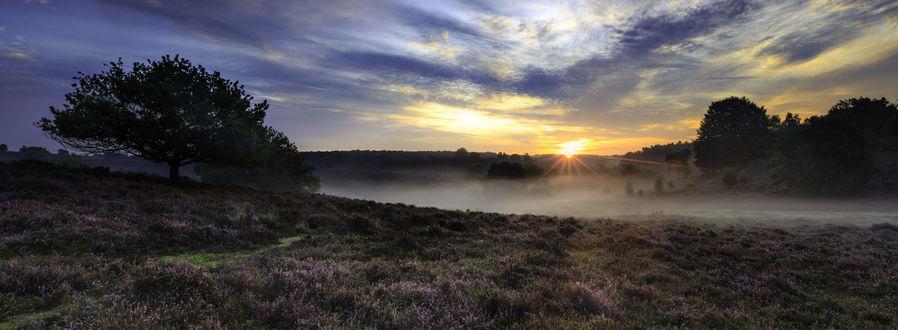 Фото Восход солнца над вересковым полем, фотограф wim denijs