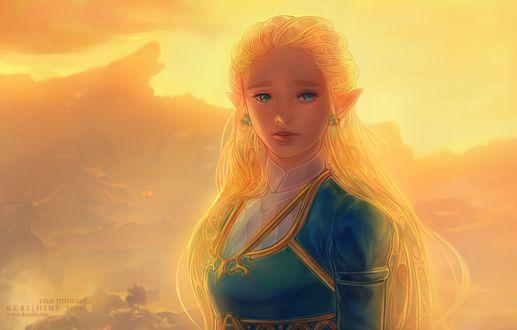 Фото Princess Zelda / Принцесса Зельда из игры Zelda no Densetsu / Skyward Sword, by Kuroszi
