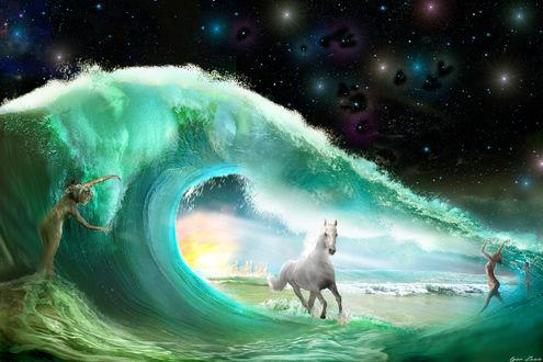 Фото Работа Бегущая по волнам. Фотограф Igor Zenin