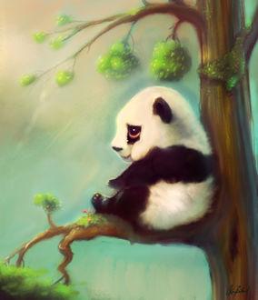 Фото Панда сидит на дереве, by ArtofOkan