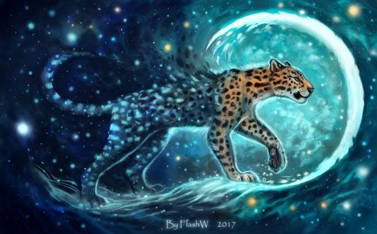 Фото Леопард на фоне ночного звездного неба, by FlashW