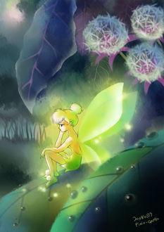 Фото Tinker Bell / Динь-Динь из мультфильма Peter Pan / Питер Пэн