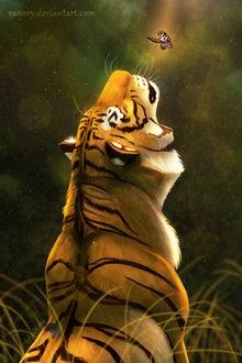 Фото Тигр смотрит на бабочку, by Vanory