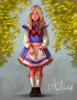 Фото Алиса из Alice in Wonderland design / Алиса из Алисы в стране чудес, by Cristina001