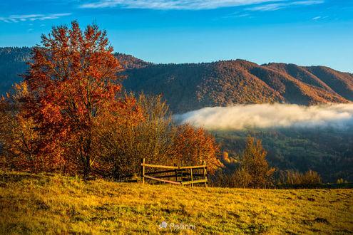 Фото Холодный утренний туман с золотым жарким рассветом в Карпатской сельской местности, фотограф Mike Pellinni