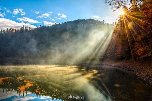 Фото Вид на кристально чистое озеро со скалистым берегом и дым на воде возле соснового леса в тумане у подножия горы на рассвете, фотограф Mike Pellinni