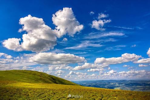 Фото Летний пейзаж под голубым небом с облаками в утреннем свете. луг с дикой травой на склоне, фотограф Mike Pellinni