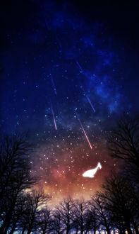 Фото Призрачный кит парит в ночном небе