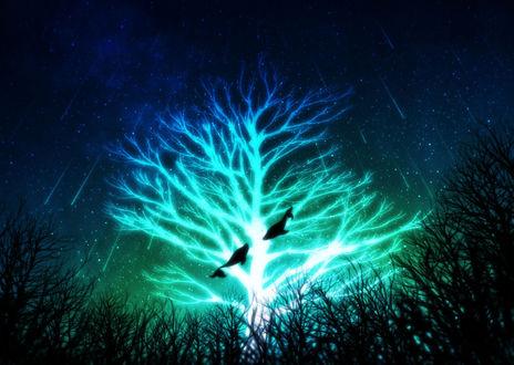 Фото Два кита парят возле светящегося дерева ночью