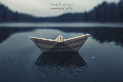 Фото Кораблик из нотной тетради на воде, by Carlos M. Almagro