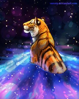 Фото Тигр в воде с небесной расцветкой со звездами, by Vanory
