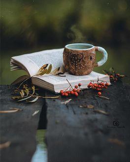 Фото Чашка горячего чая на книге и рябина на дощатом столе