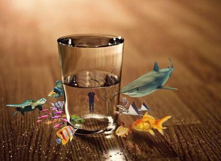 Фото Стакан с водой, вокруг которого рыбки и мужчина