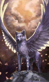 Фото Крылатый белый волк на вершине скалы, by wolf-minori