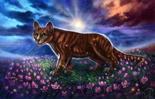 Фото Кошка на цветочной поляне, by FlashW