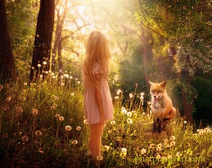 Фото Девочка смотрит на лису, by Phatpuppyart-Studios
